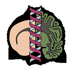 The Lingor-Lab Logo